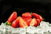 Strawberry on the ice on black background — Stock Photo