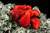 Strawberry on the ice on black background — Stock Photo