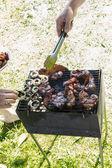 Carne a la parrilla de barbacoa al aire libre — Foto de Stock