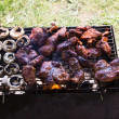 Barbecue grilled meat outdoor — Stock Photo