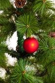 Vánoční ozdoby — Stock fotografie