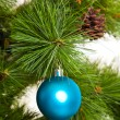 ストック写真: Christmas-tree decorations