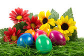 Easter eggs in busket on green gras isolated — Stock Photo
