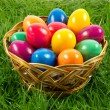 Easter eggs in busket on green gras isolated concept holyday — Stock Photo #41041533