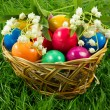 Stock Photo: Easter eggs in busket on green gras isolated concept holyday