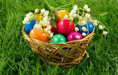 Easter eggs in busket on green gras isolated concept holyday — Stock Photo