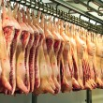 Pork carcasses — Stock Photo