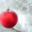 Christmas decoration on fir tree branch — Stock Photo