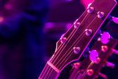 Purple Haze — Stock Photo