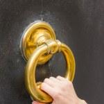 Big brass knock-ring — Stock Photo #26692393