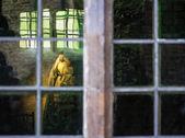 The Queen through the Window — Stock Photo