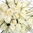 A huge bouquet of white roses. The isolated image on a white background. Cream colored roses. — Stock Photo #28335067