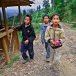 Stock Photo: Three rural adolescents aged 12 years and stroll around neighborhood of village, BashMiao Village, Congjiang County, Southeast Guizhou Province, Southwest China