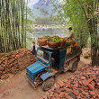 Vintage blue truck, laden of oranges in wicker baskets, China. — Stock Photo