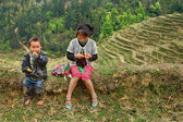 Asian children in mountains of China, among the rice terraces. — Stock Photo