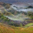 Постер, плакат: Farmhouses in the highlands of China farm land rice terraces