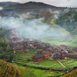 Постер, плакат: Hillside rice terraces rice fields in the highlands of Asia