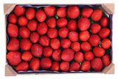 Perishable product, wooden tray with strawberries — Stock Photo