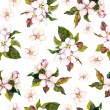 Seamless floral pattern - pink apple and cherry flower blossom. Watercolour — Stock Photo #43869901