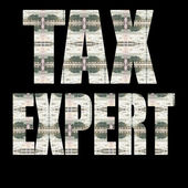 TAX EXPERT — Stock Photo