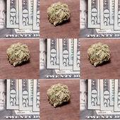 Medical Marijuana and Money — Stock Photo