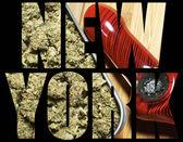 Medical Marijuana, New York — Stock Photo