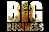 American Marijuana Industry — Stok fotoğraf