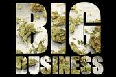 Industria americana marijuana — Foto Stock