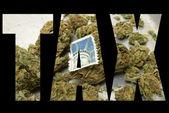 アメリカのマリファナの業界 — ストック写真