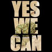 American Recreational and Medicinal Marijuana Industry — Stock Photo