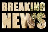Amerikaanse recreatieve en medicinale marihuana industrie — Stockfoto
