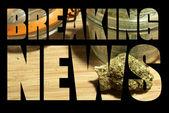 Amerikanische freizeit- und medizinische marihuana-industrie — Stockfoto
