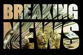 美国的娱乐和药用大麻产业 — 图库照片