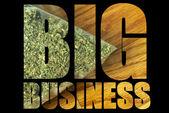 Industria de la marihuana — Foto de Stock