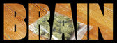 Marijuana Health and Science, Medical and Recreational Drug Industry in America — Stock Photo