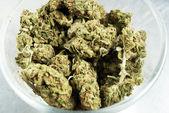 Marihuana — Foto de Stock