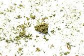 Marijuana — Zdjęcie stockowe