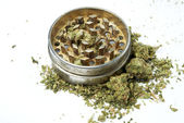 Marijuana, Medical and Recreational Drug Industry in America — Stock Photo