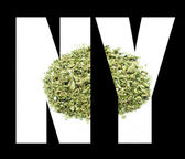 Marijuana, New York Symbol and Icon, NY — Foto de Stock