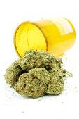 Fondo de marihuana cannabis, blanco — Foto de Stock