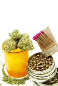 Marijuana Cannabis, White Background — Foto de Stock