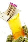 Marihuana i konopi, białe tło — Zdjęcie stockowe