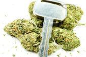 Marijuana, Driving Under the Influence, Cannabis and Car Keys — Stock Photo