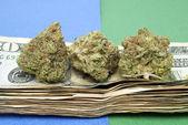 Marijuana and Money — Stock Photo