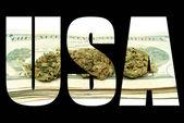 Marihuana i konopi, Stany Zjednoczone Ameryki — Zdjęcie stockowe