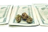 Marihuana i pieniądze — Zdjęcie stockowe