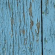 Old fence — Stock Photo #26226993