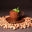 Chocolate with hazelnuts and mint — Stockfoto
