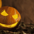 Evil pumpkin on Halloween — Stock Photo