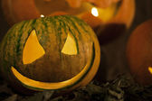 Sly pumpkin on Halloween — Stock Photo